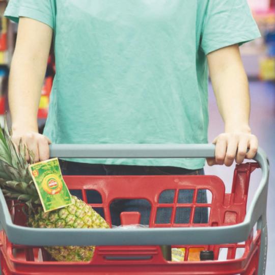 Carro de Supermercado Bravo